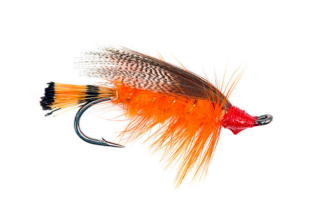 Fly fishing hook Fluffy fly fishing hook isolated on white casting stock pictures, royalty-free photos & images