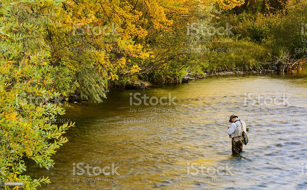 Fly fishing in Boise River stock photo