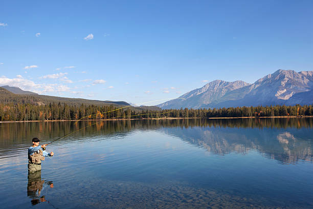 Fly Fishing In Rocky Mountains, Alberta, Canada Fisherman fly fishing in Lake Edith with Rocky Mountains and blue skies in the background. fly fishing stock pictures, royalty-free photos & images