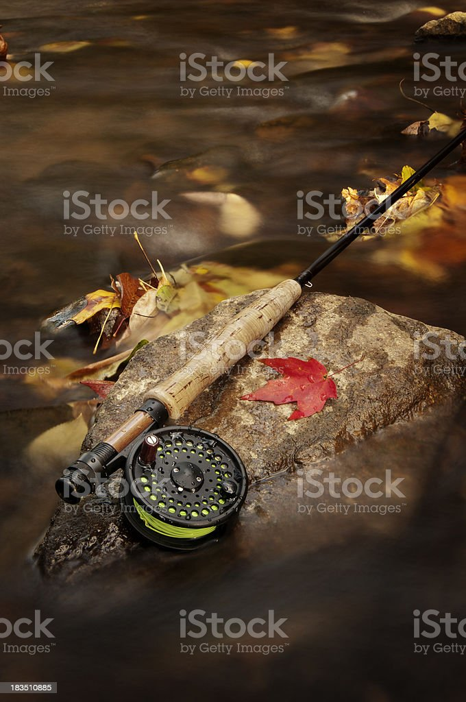 Fly fishing in the Fall stock photo