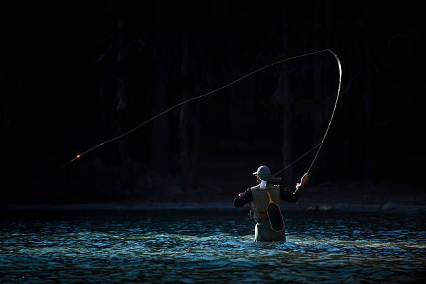 Fly Fishing in the River A fly fisherman wading in the middle of a river. freshwater fishing stock pictures, royalty-free photos & images