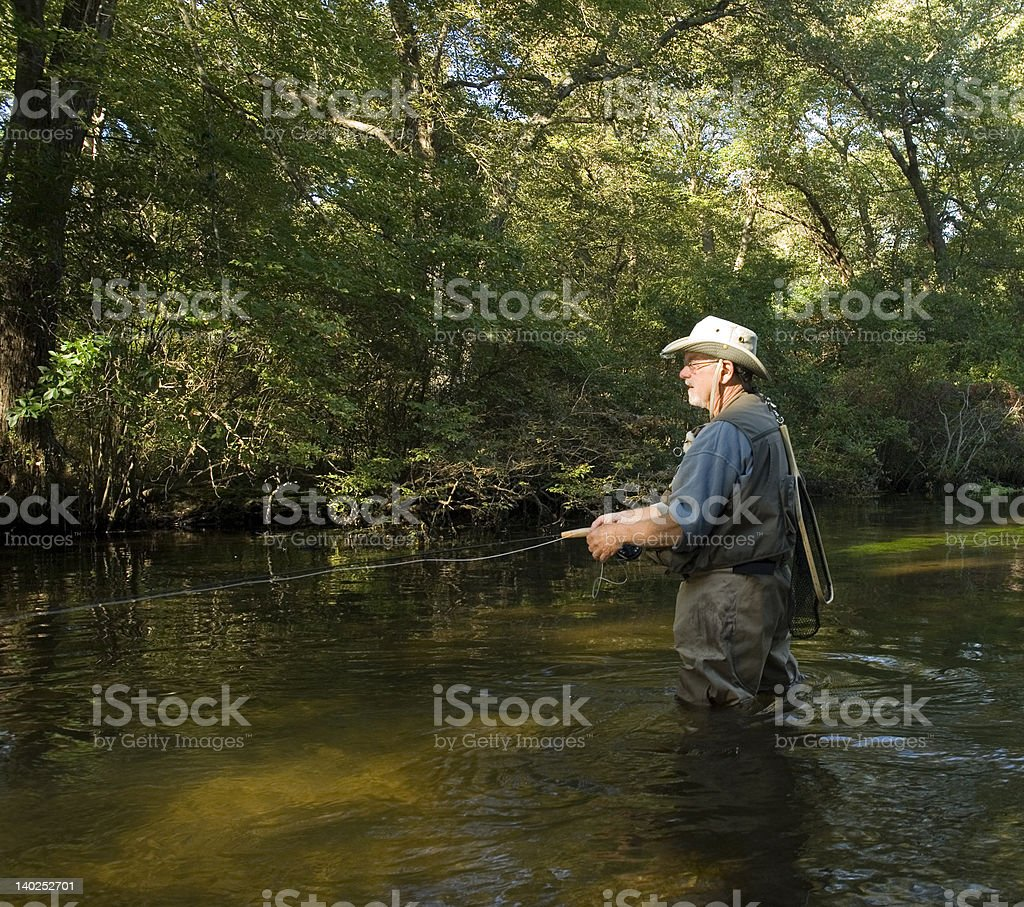 fly fishing in the stream stock photo