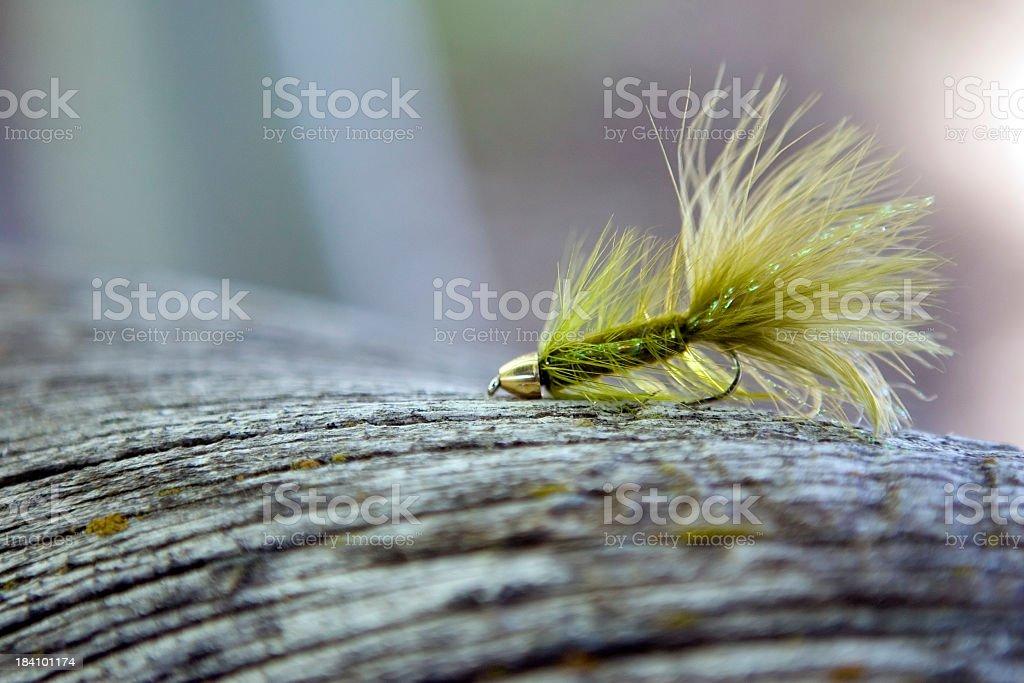 Fly Fishing Lure on Log-olive bugger royalty-free stock photo