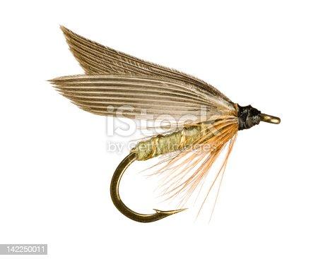 istock Fly Fishing Lure 142250011