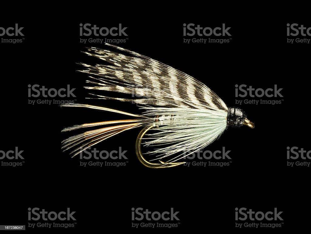 Appât de pêche à la mouche - Photo