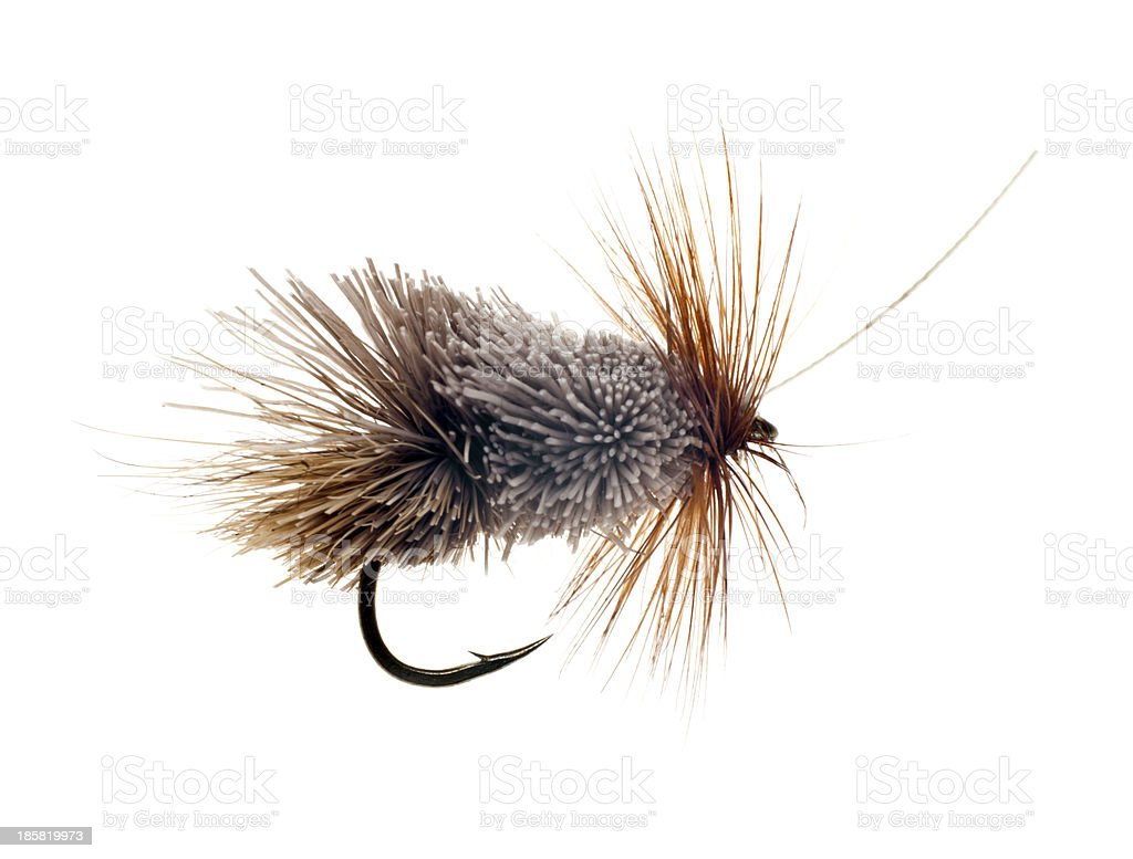 Fly Fishing Lure royalty-free stock photo