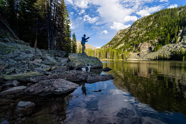 Fly Fishing on Mountain Lake Fly Fishing on Mountain Lake - Man casting and fishing in scenic landscape environment. casting stock pictures, royalty-free photos & images