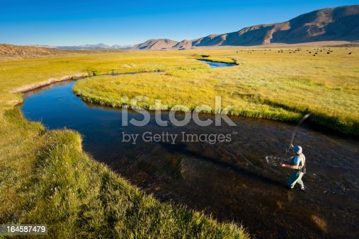 istock Fly Fishing on the Owens River 164587479