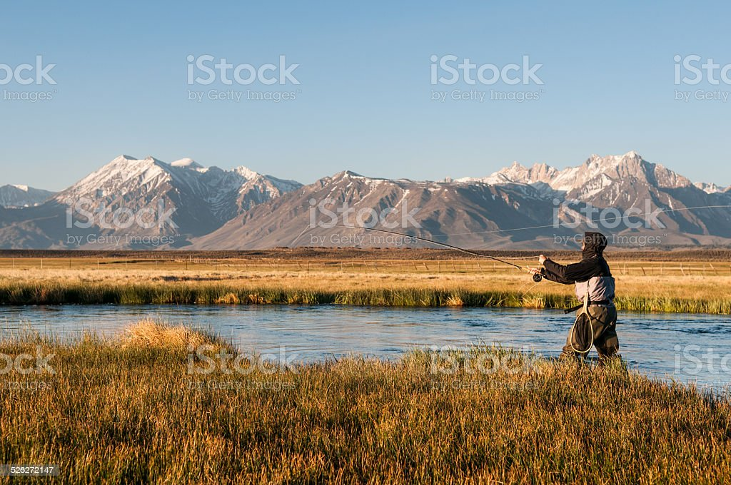 Fly Fishing Owens River stock photo