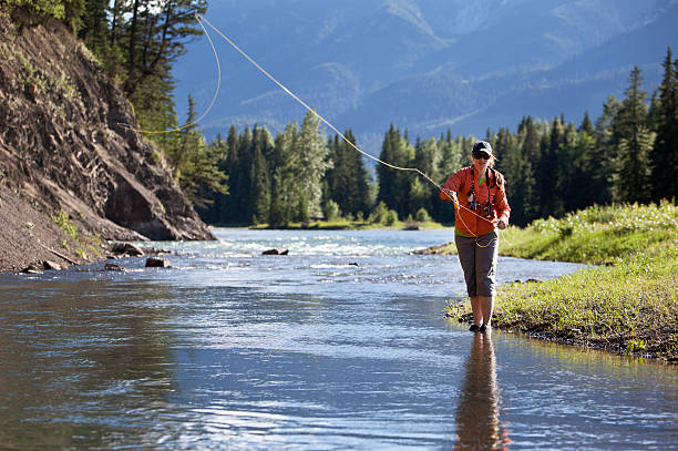 Fly Fishing  casting stock pictures, royalty-free photos & images