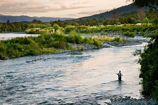 Fly Fishing  fly fishing stock pictures, royalty-free photos & images