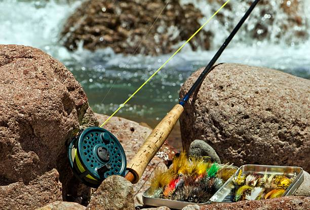 Pesca con mosca - foto de stock