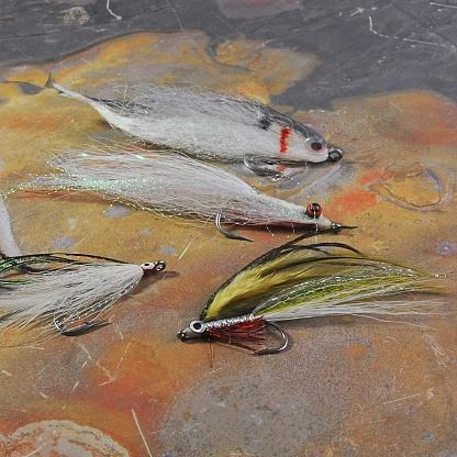 istock Fly fishing 658556372