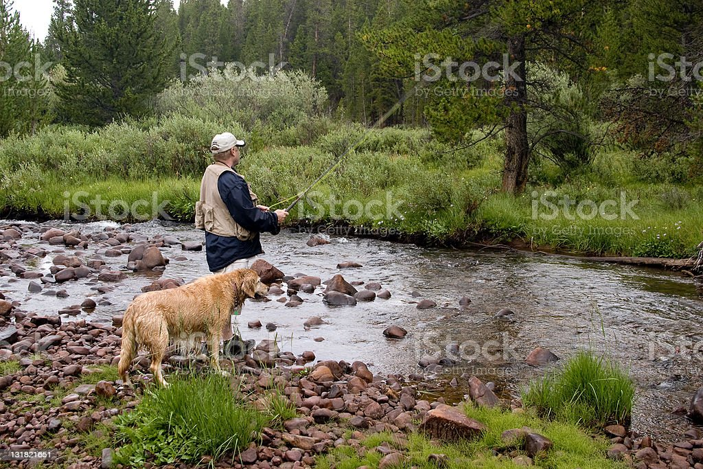 Fly Fishing with Dog stock photo