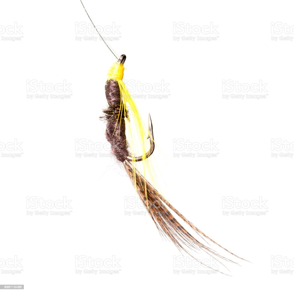fly for fishing on a white background stock photo