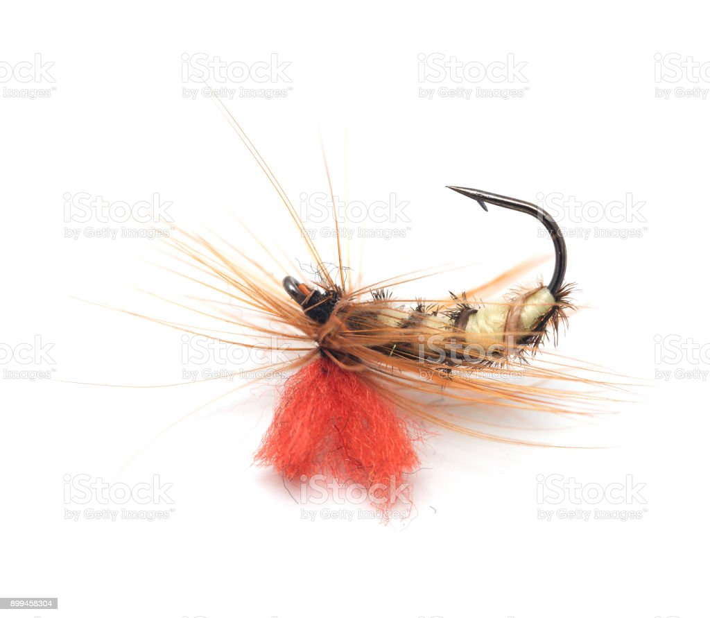 fly for fishing on white background stock photo