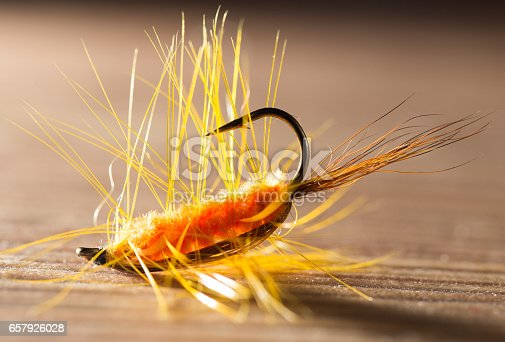 istock fly for fishing 657926028