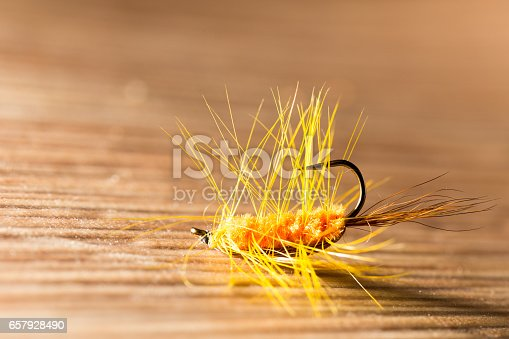 istock fly for fishing 657928490