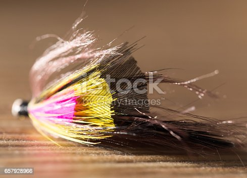 istock fly for fishing 657928966
