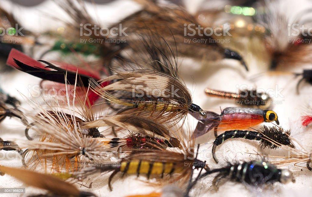 Fly Hooks stock photo