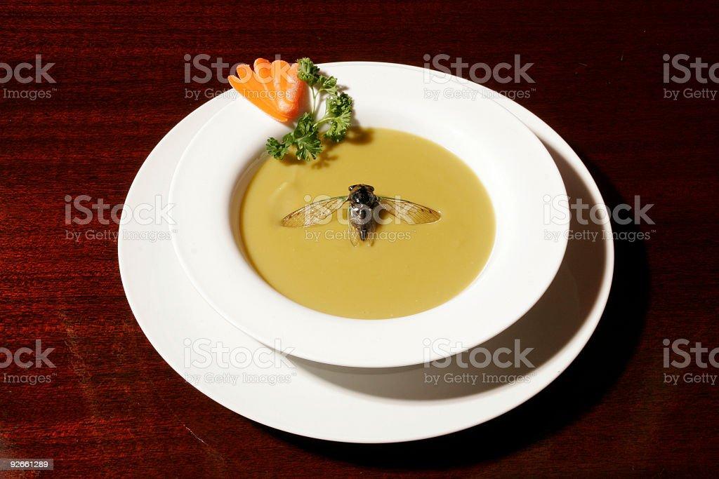 Fly in meinem Suppe – Foto