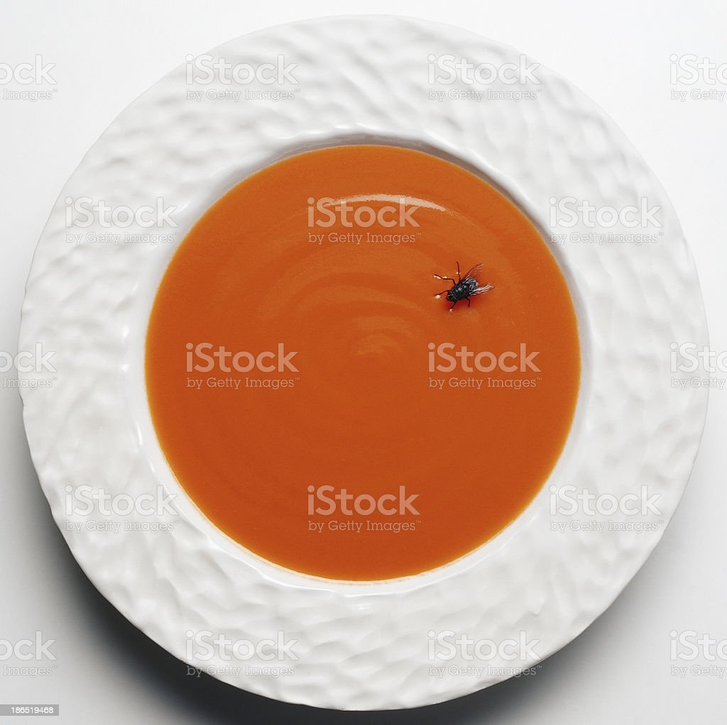fly in soup royalty-free stock photo