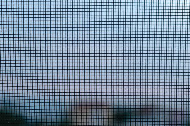 siebgewebe schließen sich details zu fliegen - fliegengittertüre stock-fotos und bilder
