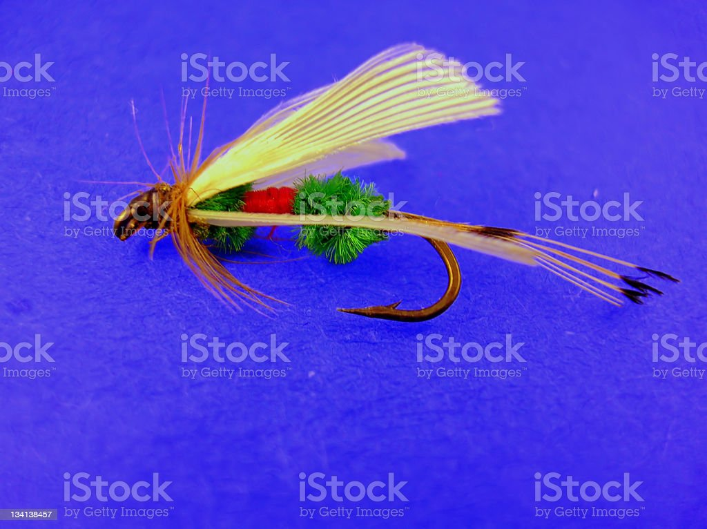 Fly Time stock photo