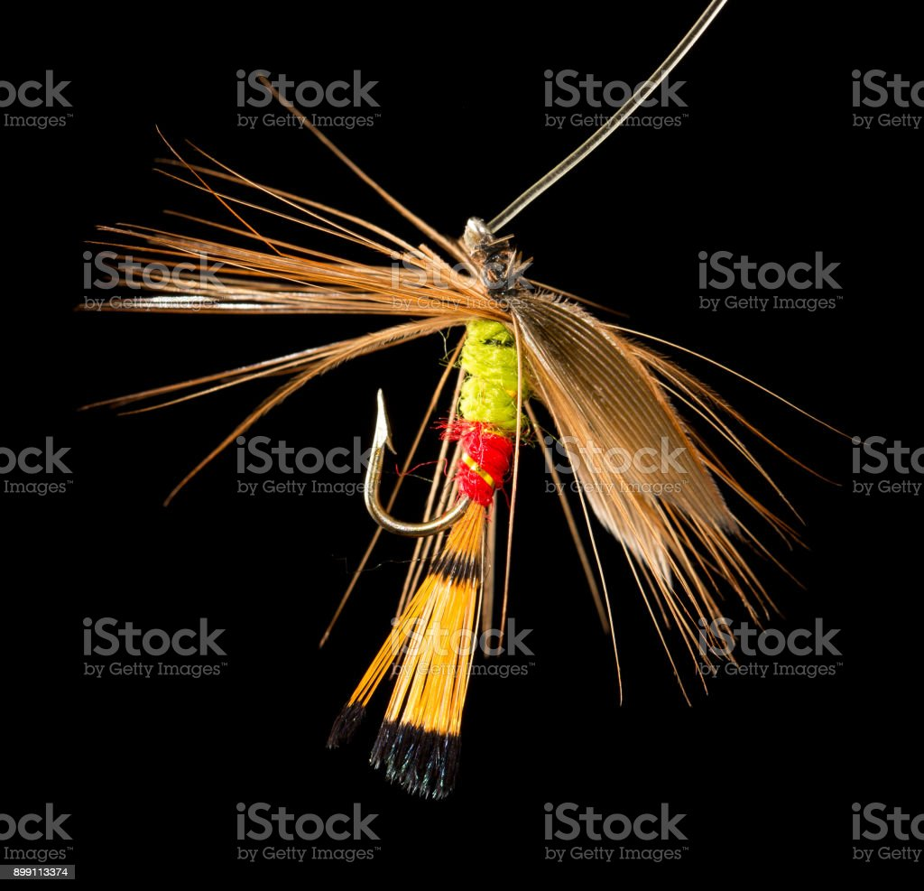 fly to catch fish on a black background stock photo