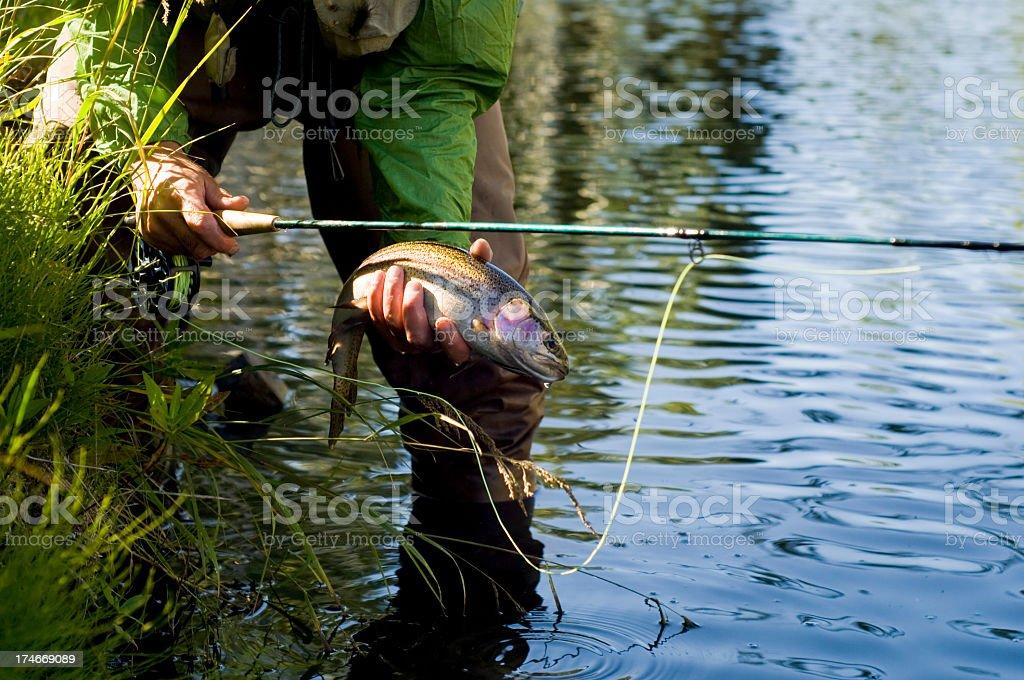 Fly_fishing stock photo