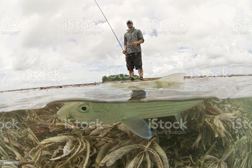 flyfishing for bonefish stock photo