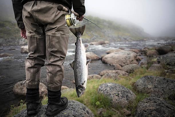 Fliegenfischen nach Lachsen – Foto