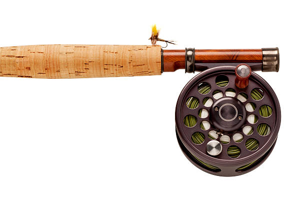 Fly-Fishing Rod & Reel on White Background. Close up of the handle of a fly-fishing rod & reel with a yellow fly. Works as a Horizontal OR Vertical shot. fishing reel stock pictures, royalty-free photos & images