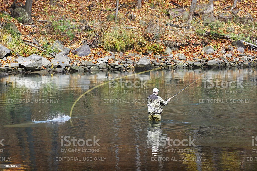 Fly-Fishing Trout Fisherman Casting royalty-free stock photo