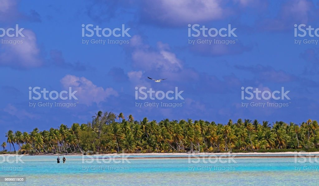 Fly-Fishing with a Guide in French Polynesia stock photo