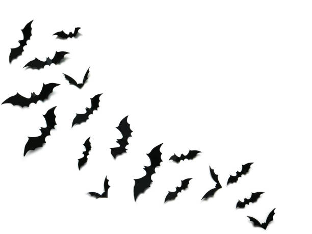 白い背景、ハロウィーンの装飾コンセプトの上に黒いコウモリを飛ぶ。 - halloween ストックフォトと画像