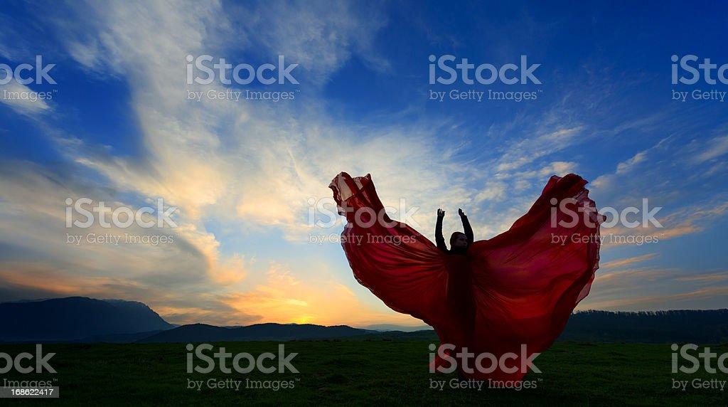 flying dress royalty-free stock photo