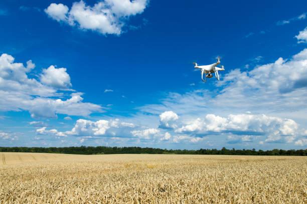麥田上空的無人駕駛飛機圖像檔