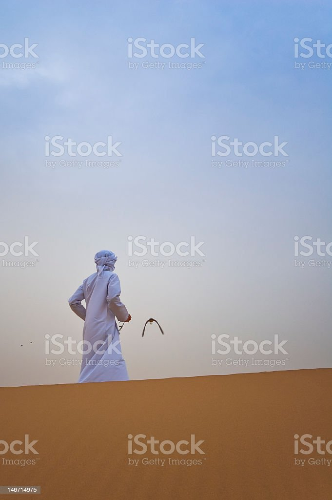 A flying falconry in the dessert stock photo