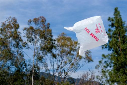 Flying Grocery Bag