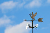 A duck on a cast iron weathervane.