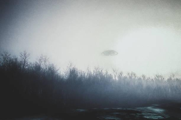 UFO fliegt über Wald bei Nacht – Foto