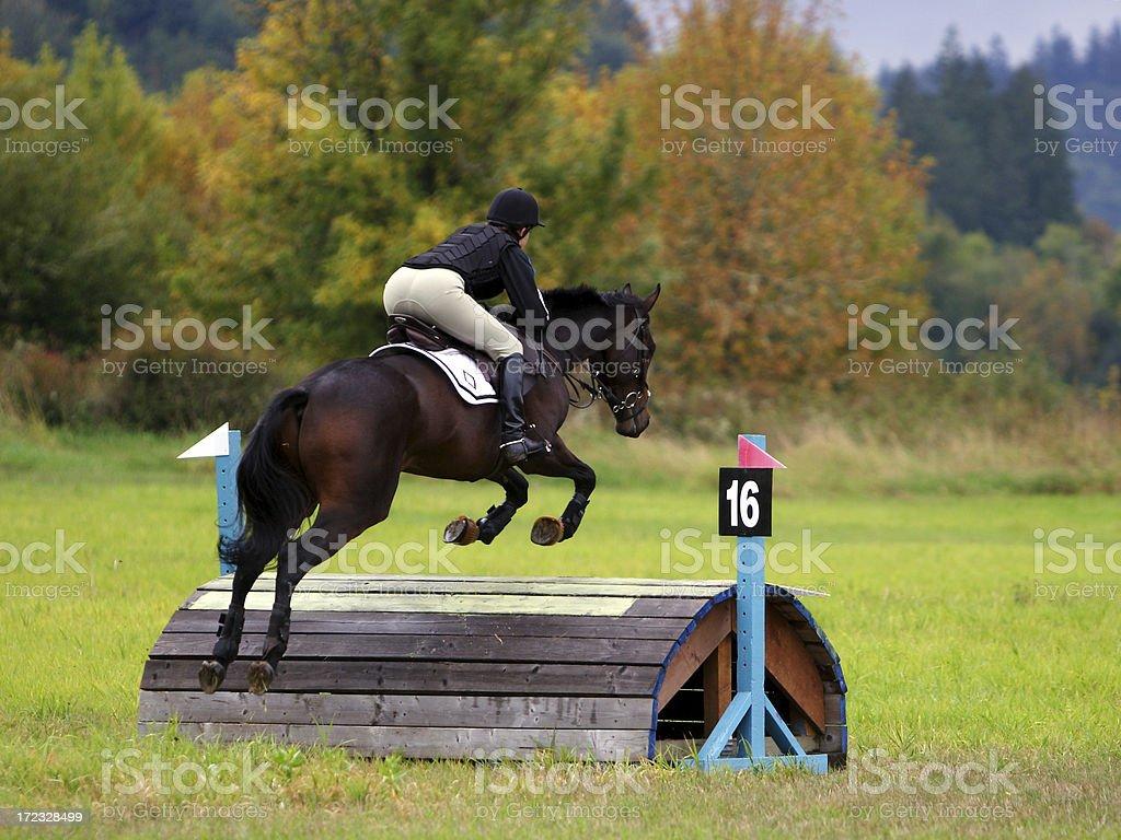Flying Over Sixteen stock photo