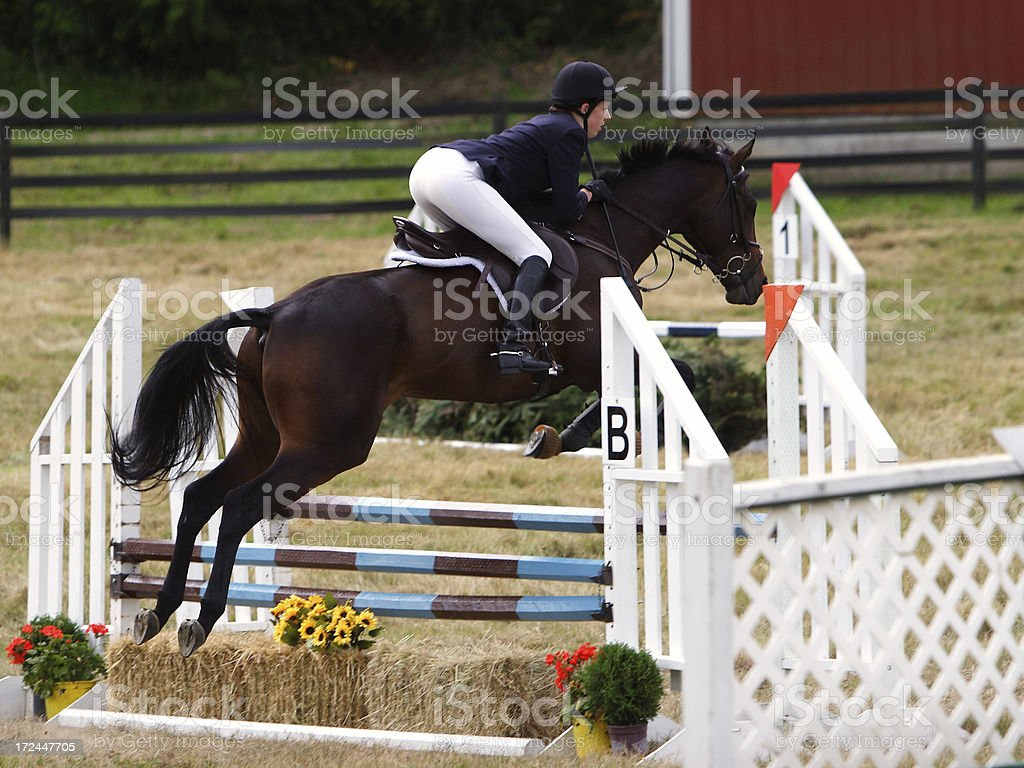 Flying Over the Oxer stock photo
