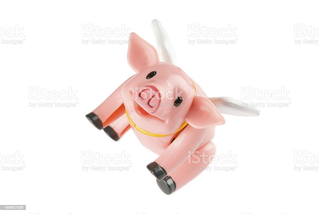Flying pig on a white background. Clipping path included. stock photo