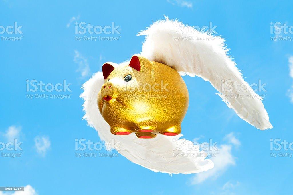Flying Pig stock photo