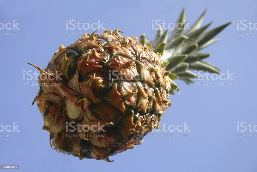 Flying Pineapple royalty-free stock photo