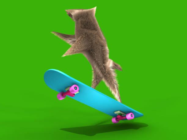 fliegenden skateboard und eichhörnchen - maus comic stock-fotos und bilder