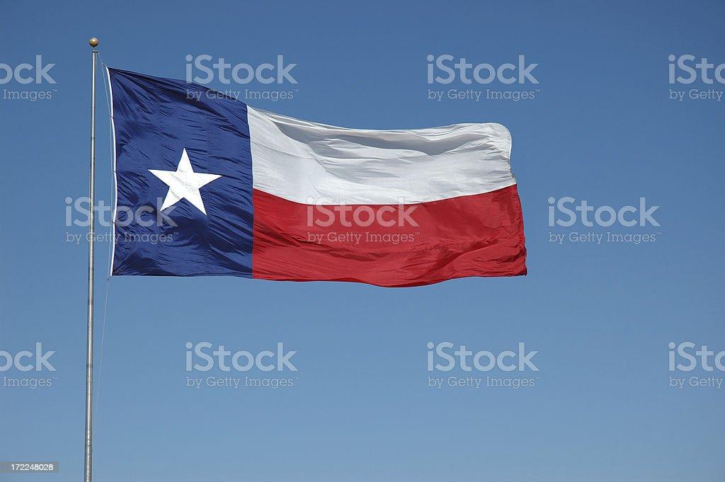 Ondeando bandera de Texas - foto de stock