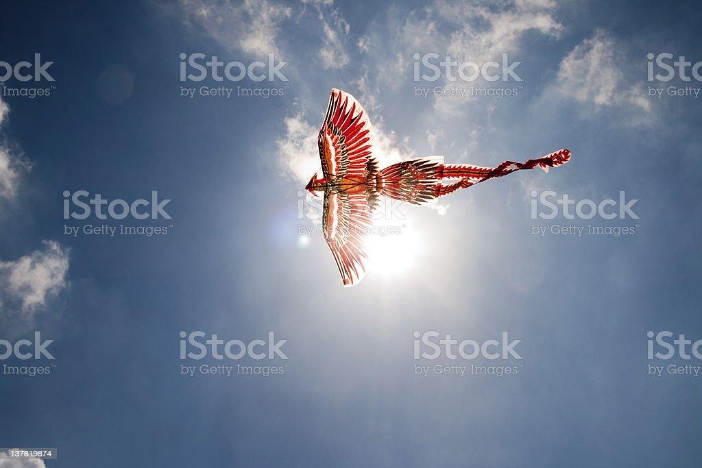 Flying the Firebird royalty-free stock photo